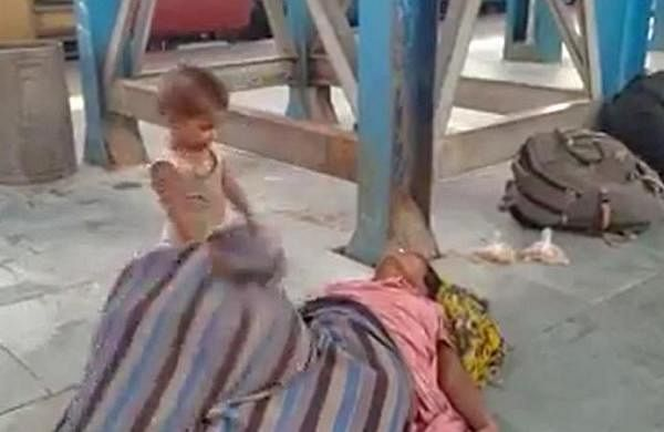 After video of toddler, dead mother goes viral, complaint filed in NHRC against Railways, Bihar govt