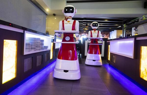 Hello and welcome: Robot waiters to rescue in Netherlands amid coronavirus pandemic