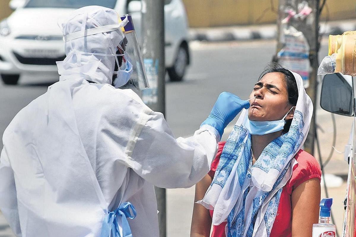Rajasthan starts conducting 10,000 coronavirus tests per day- The New  Indian Express