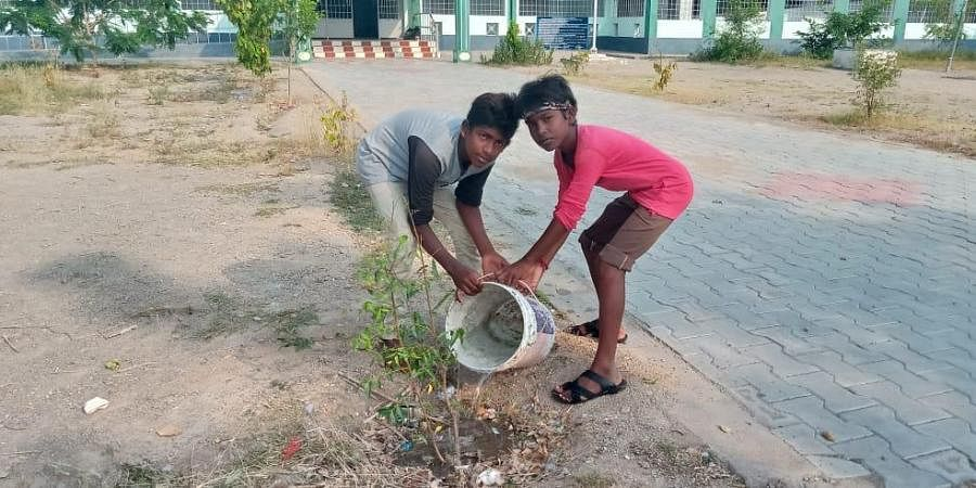 School students pouring water to a sapling in Sengunam Government High School in Perambalur district.