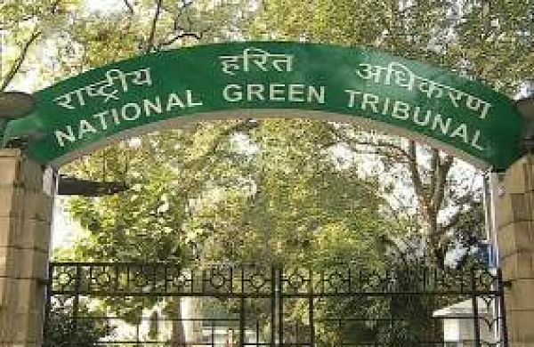 COVID-19: National Green Tribunalasksstaff to physically attend office from June 1