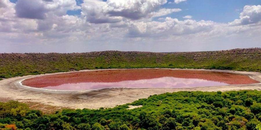 The Lonar lake in Buldhana district of Maharashtra (Photo | Twitter/ oiseaulibre3)