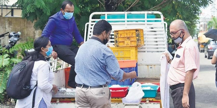 Sreekanth and Arun, formerly employed with five star hotels in the state, sell fish near Kaloor stadium in Kochi.