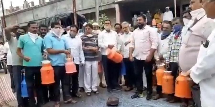 Maharashtra dairy farmers protest, demand higher prices for milk