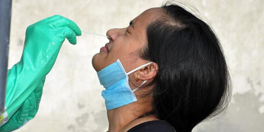 A woman gives swab sample for COVID-19 testing in Kullu on Friday