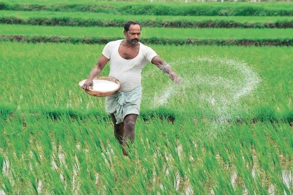 Due to lockdown, TN farmers struggle to get fertiliser, equipment- The New  Indian Express