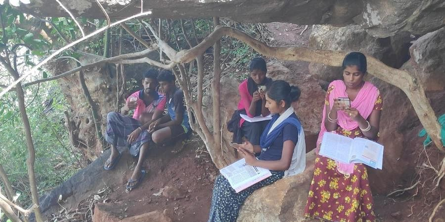 Students from the tribal villages of Pachamalai hill in Tiruchy sitting on hill top to get internet.