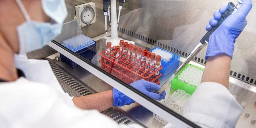 In this handout photo released by the University of Oxford samples from vaccine trials are handled inside the Oxford Vaccine Group laboratory.