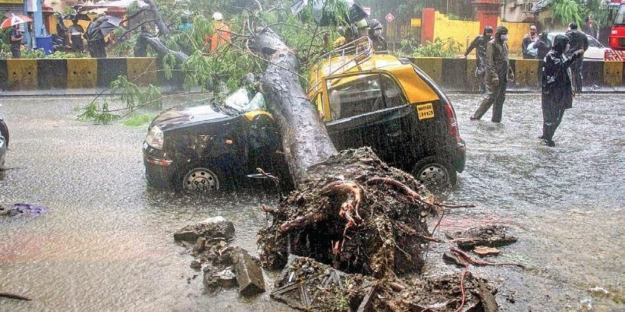 Firemen and police personnel carry out relief works after an uprooted tree fell on a taxi due to heavy monsoon rains.