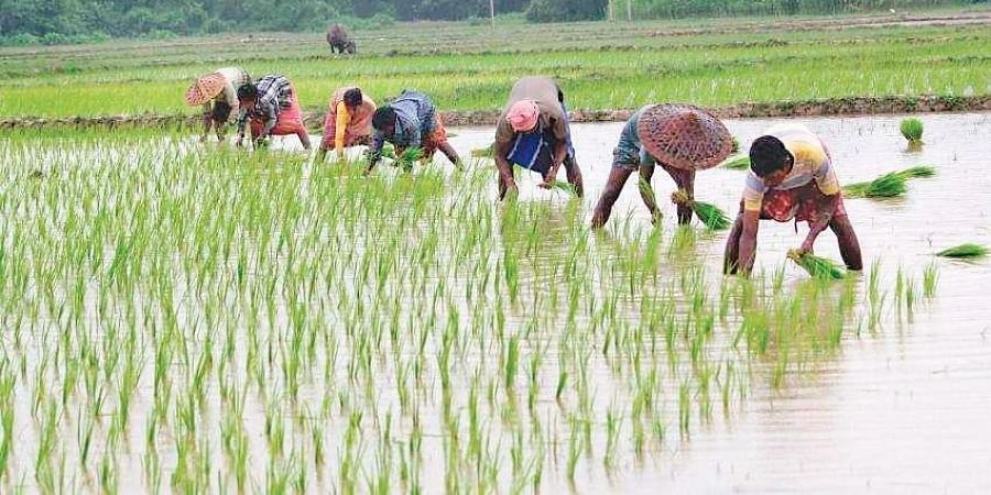 Farmers in Haryana are demanding a rollback of the Farmers' Produce Trade and Commerce Ordinance.