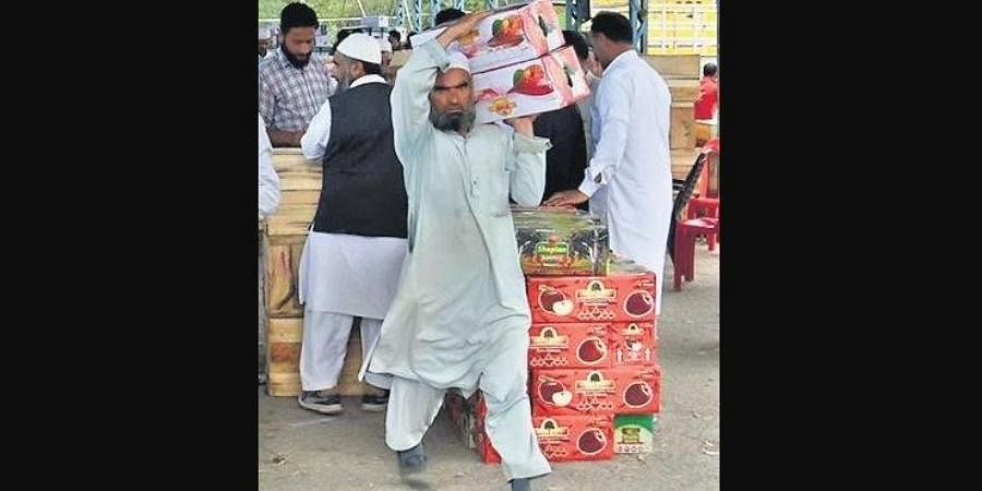 A trader carries boxes of apple at a market in Shopian.
