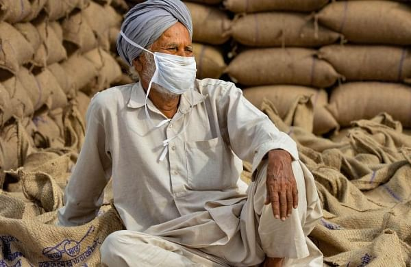 Amid farm bills debate, Government increases MSP of 6 Rabi crops, hikes wheat price by Rs 50