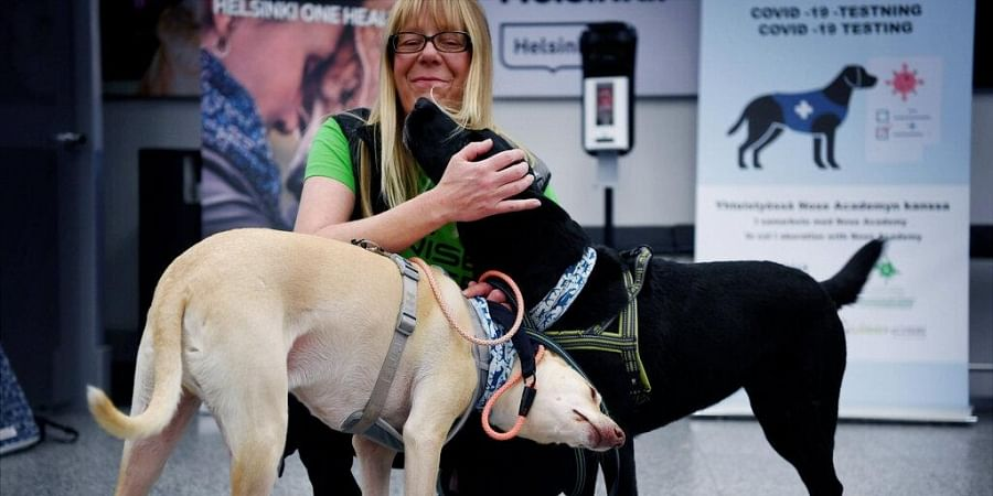 Hielm-Bjorkman told The Associated Press that Finland is the second country after the United Arab Emirates - and the first in Europe - to assign dogs to sniff out the coronavirus.