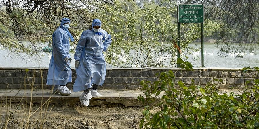 A team of veterinaries inspect ducks and other birds at Sanjay Lake amid a bird flu scare in New Delhi Monday