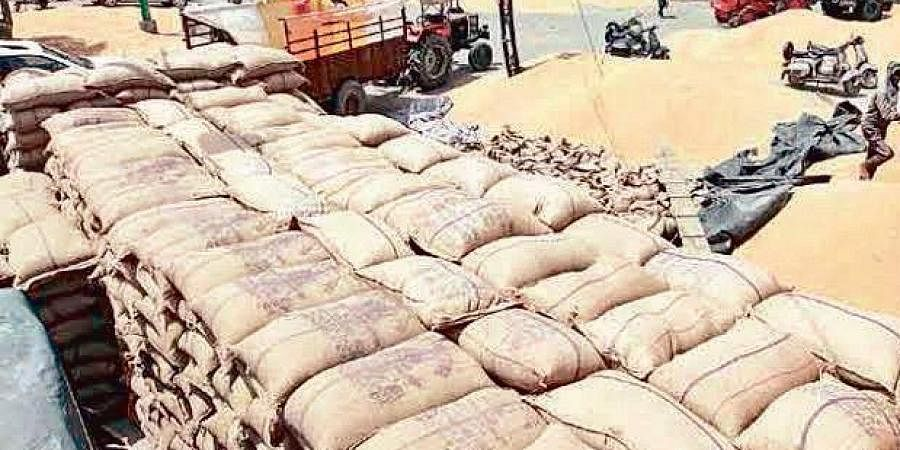 Paddy procurement