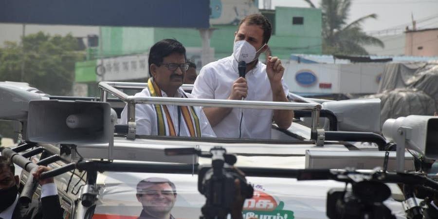 Rahul Gandhi in Tamil Nadu. (Photo| EPS/ U Rakesh Kumar)