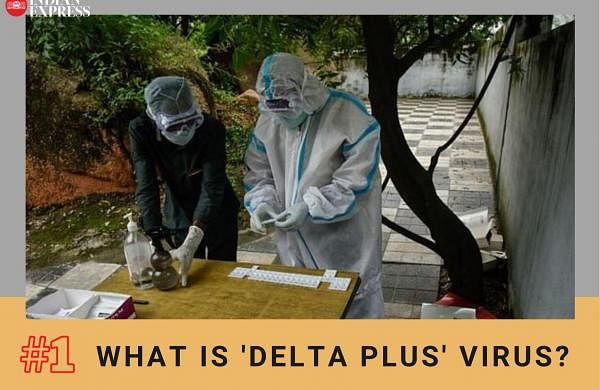 New Covid variant a cause of concern? What we know so far about 'delta plus' AY4.2 coronavirus