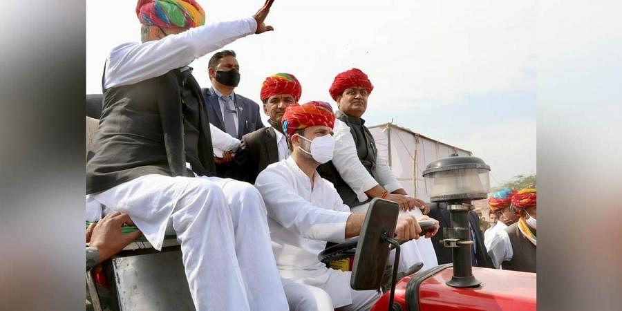 Congress leader Rahul Gandhi on a tractor in Rajasthan. (Photo| Twitter/ @INCIndia)