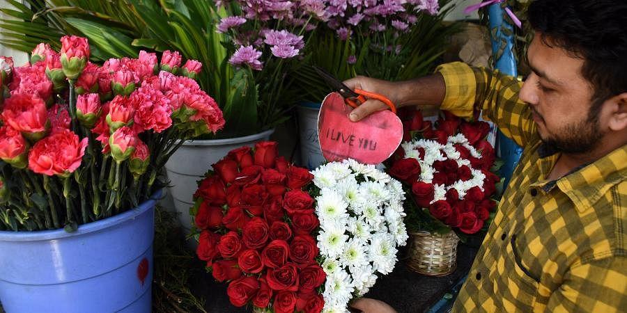 roses, V-day, valentines day