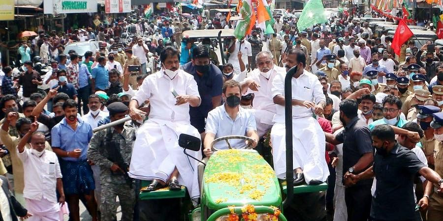 Congress leader Rahul Gandhi leads a tractor rally in solidarity with farmers protest at Muttil in Wayanad. (Photo  EPS/ TP Sooraj)