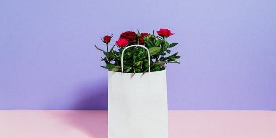 flowers, flower, roses, valentines day