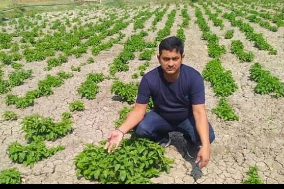 Bihari Farmer Farms Hoop Shoot In India - The World's Crazy Priced Veg