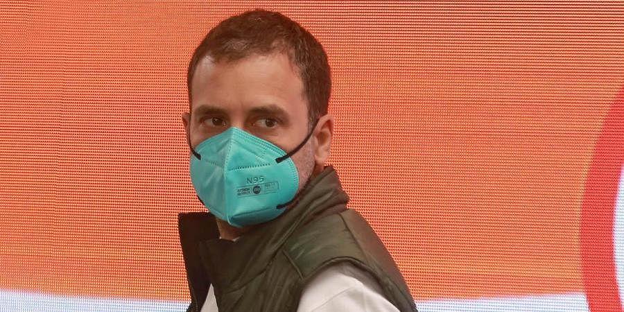 Congressleader Rahul Gandhi. (Photo | Shekhar Yadav, EPS)