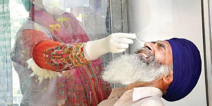 A medic collects swab sample for Covid testing in Amritsar on Saturday. (Photo | PTI)