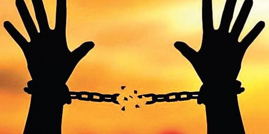 liberation, freedom