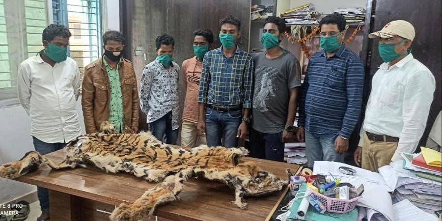 The arrested people with the tiger skin