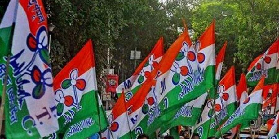 Trinamool flag, Trinamool Congress flag