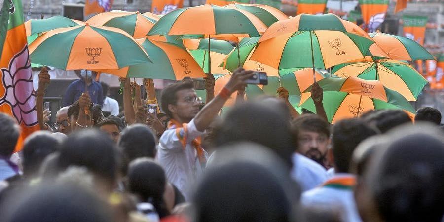 BJP, BJP flags