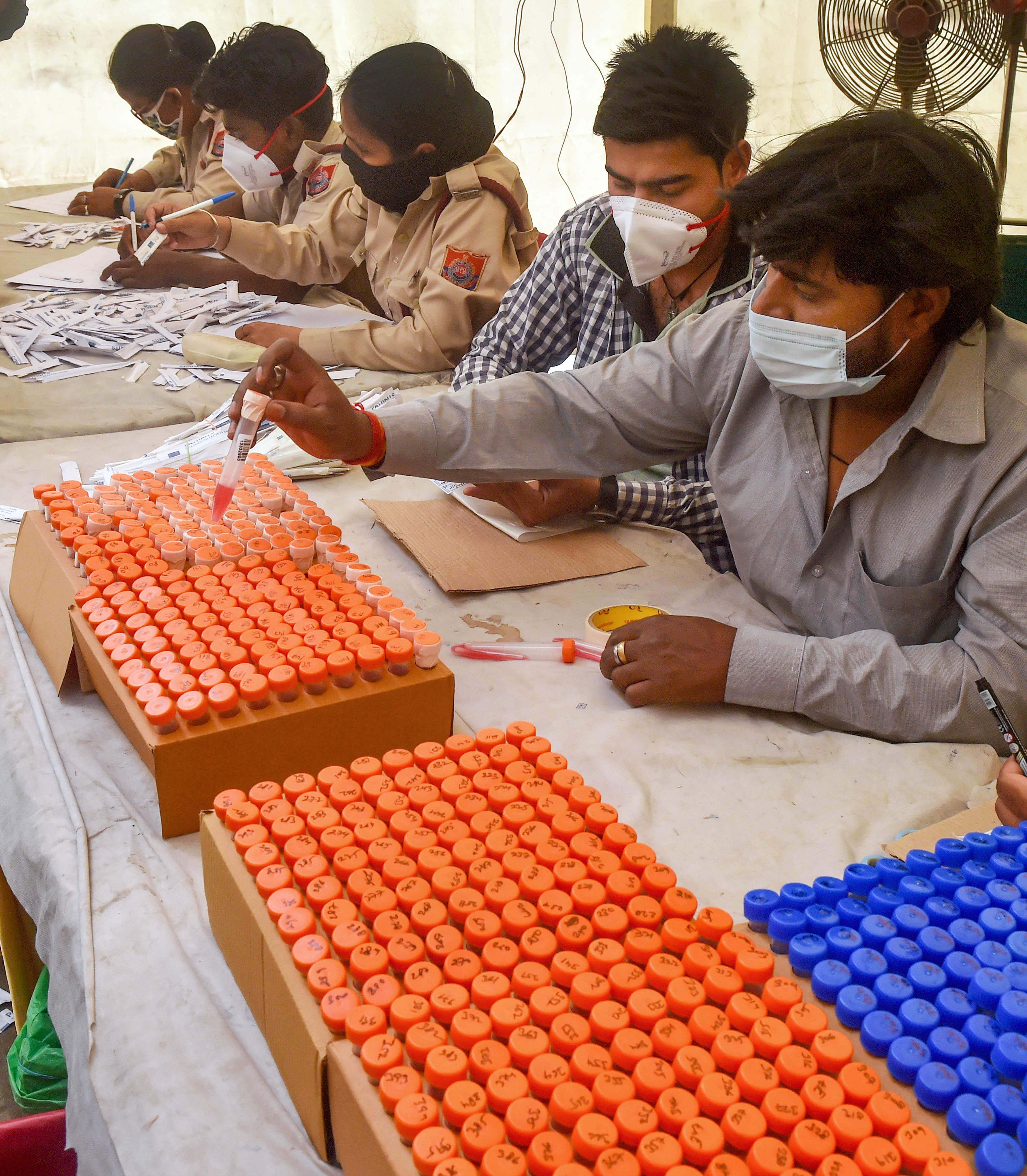Health workers sort samples during COVID-19 testing of passengers, as coronavirus cases surge across the national capital, at Anand Vihar Bus Terminal in New Delhi