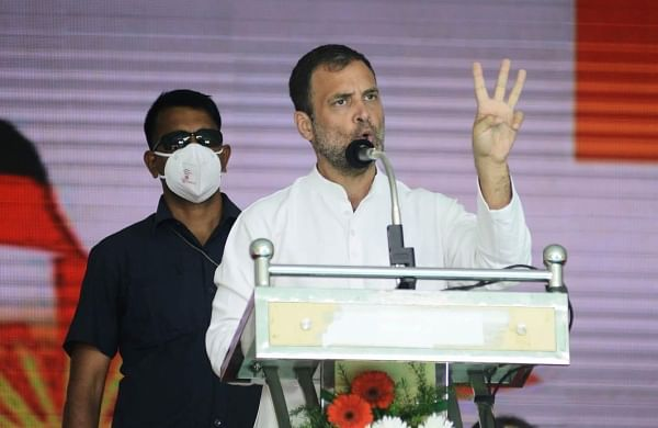 Rahul Gandhi slams government's COVID-19 strategy