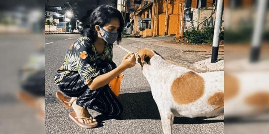Animal welfare activist Parvathy Mohan feeds a dog