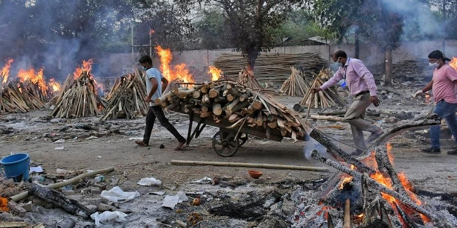 A worker carries wood on a hand cart as multiple funeral pyres of COVID-19 victims burn at a crematorium on the outskirts of New Delhi