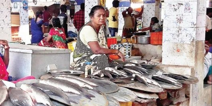 Fish exports to neighbouring Tamil Nadu, Odisha and Telangana from Nellore district have plummeted.