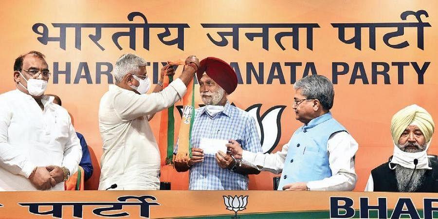 BJP, Congress, Shiromani Akali Dal, AAP, Punjab