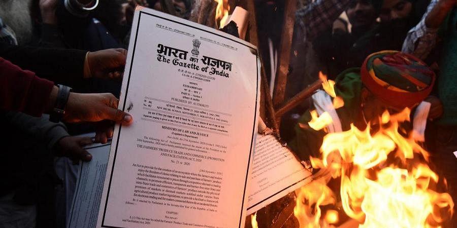 Farmer leaders burn the copies of three farm law during lohri celebrations at Singhu border. (Photo  Parveen Negi, EPS)
