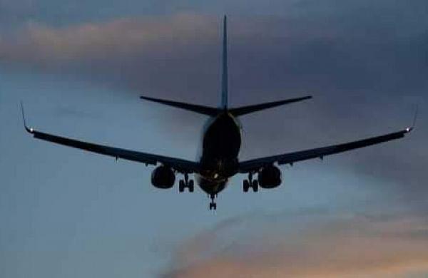 Chhattisgarh: Delhi-bound AI flight abandons take off after bird-hit at Raipur airport