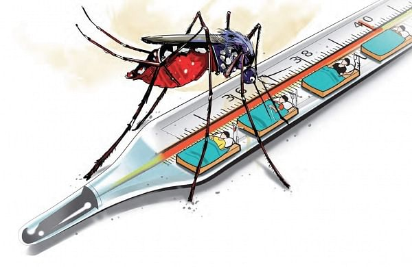 Death toll due to dengue in UP's Firozabad rises to 63